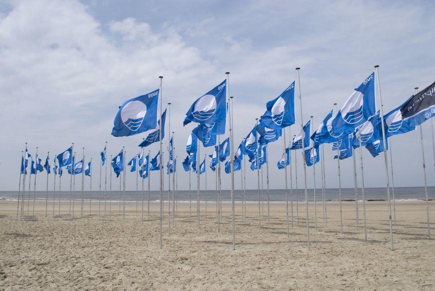 Blaue Flaggen1